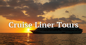 Cruise Liner Day Tour Ireland